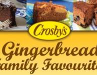 Gingerbread-E-Book-BLOG-Banner-268x179